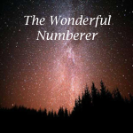 The Wonderful Numberer